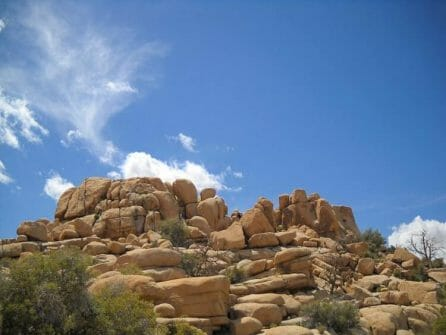 rocky landscape joshua tree california