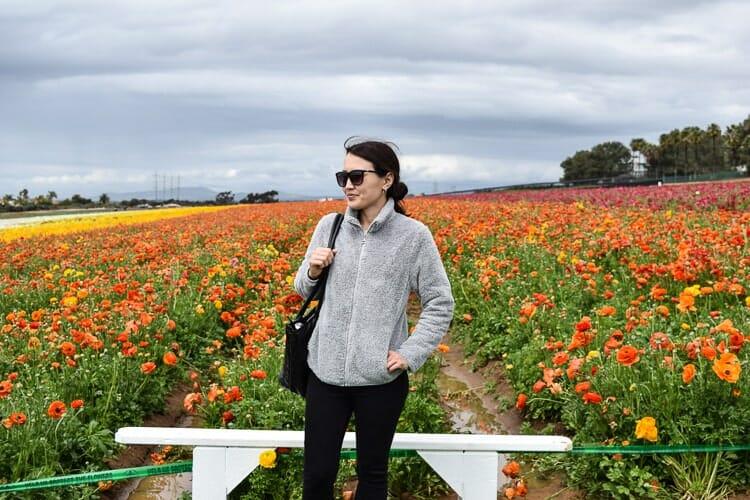 flower fields carlsbad california