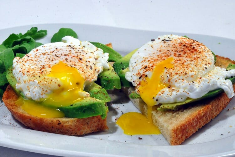 avocado toast great white venice