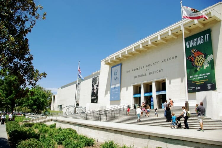 national history museum of los angeles