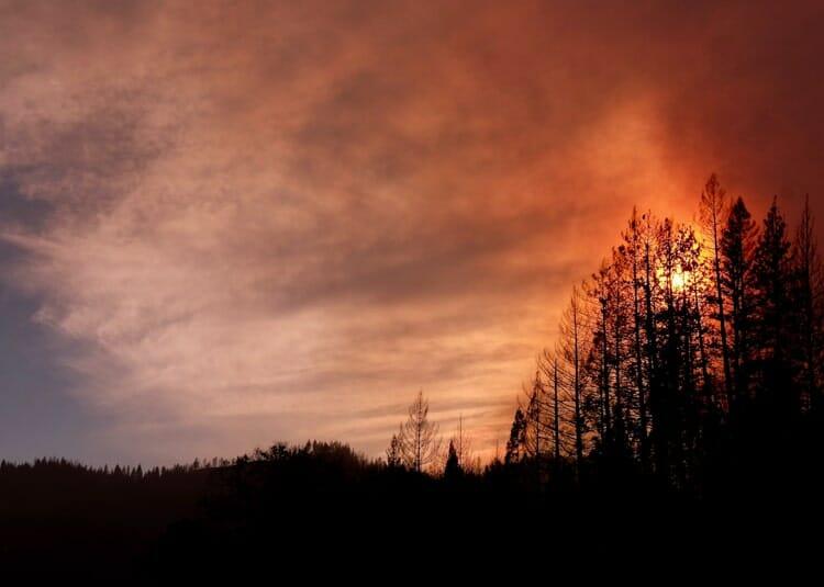 shasta california fall