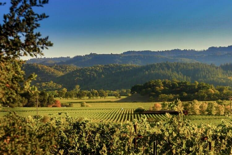 napa valley california fall