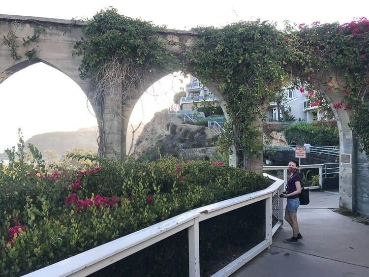 dana point arches