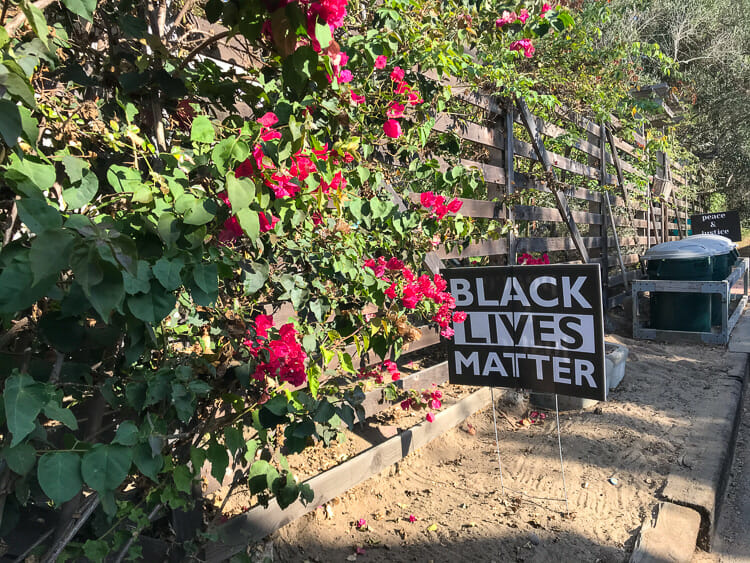 black lives matter sign del mar